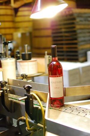 The Hafner 2014 Rosé is filled, bottled & labeled. It will be released in April 2015.