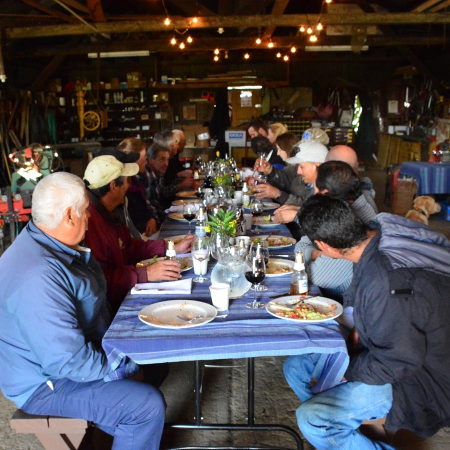 Lunchtime at Hafner Vineyard