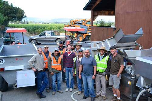 Hafner Vineyard Harvest Crew