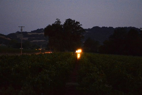 Machine Harvester at Night