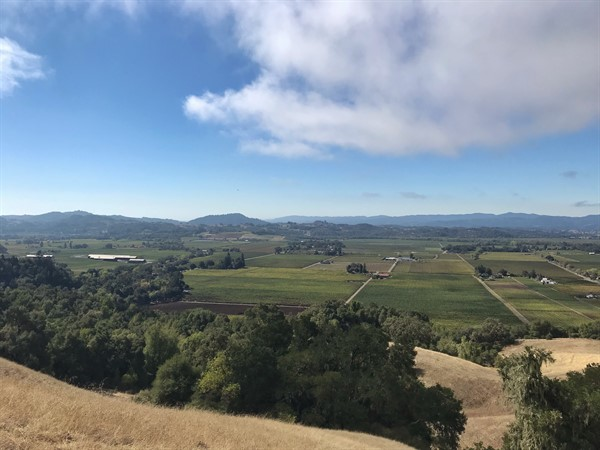 View of Alexander Valley
