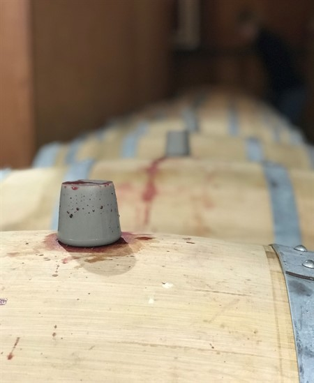 Cabernet Barrel Experiment