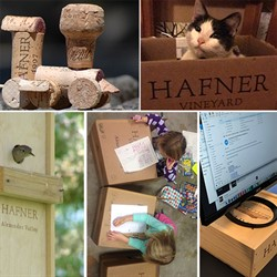 Hafner Vineyard Sustainability