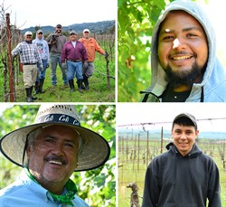 Vineyard Team Photography